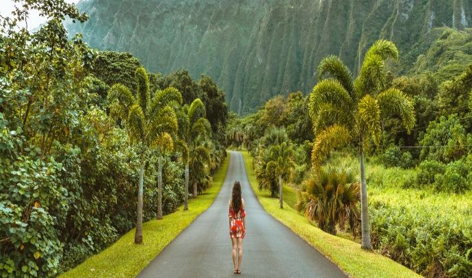 HAWAI AL COMPLETO