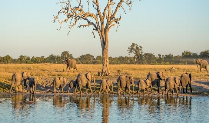 ZIMBABWE NORTE
